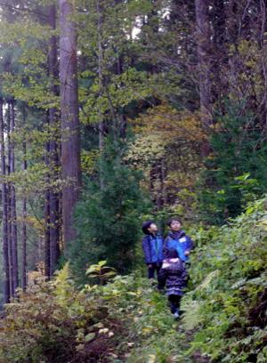 森と子どもたち