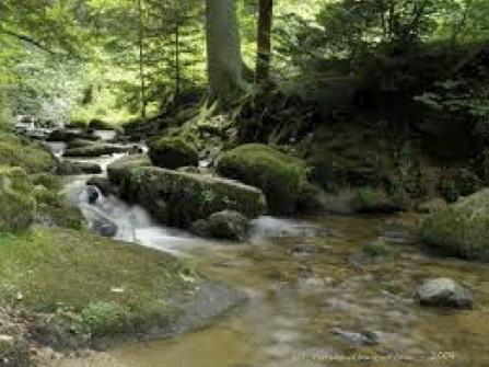 良質な水で知られ、日本でも広く販売されているミネラルウォーター『ボルヴィック』の水源としても有名です。