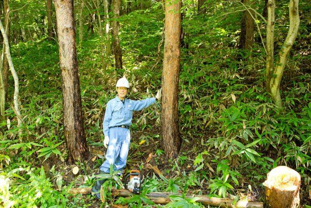 手入れがなされた豊かな森と室長の長田さん