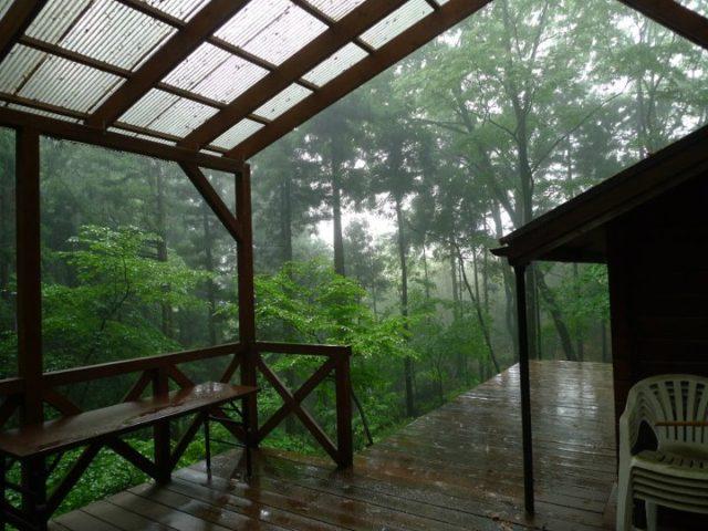 小屋からの雨の風景